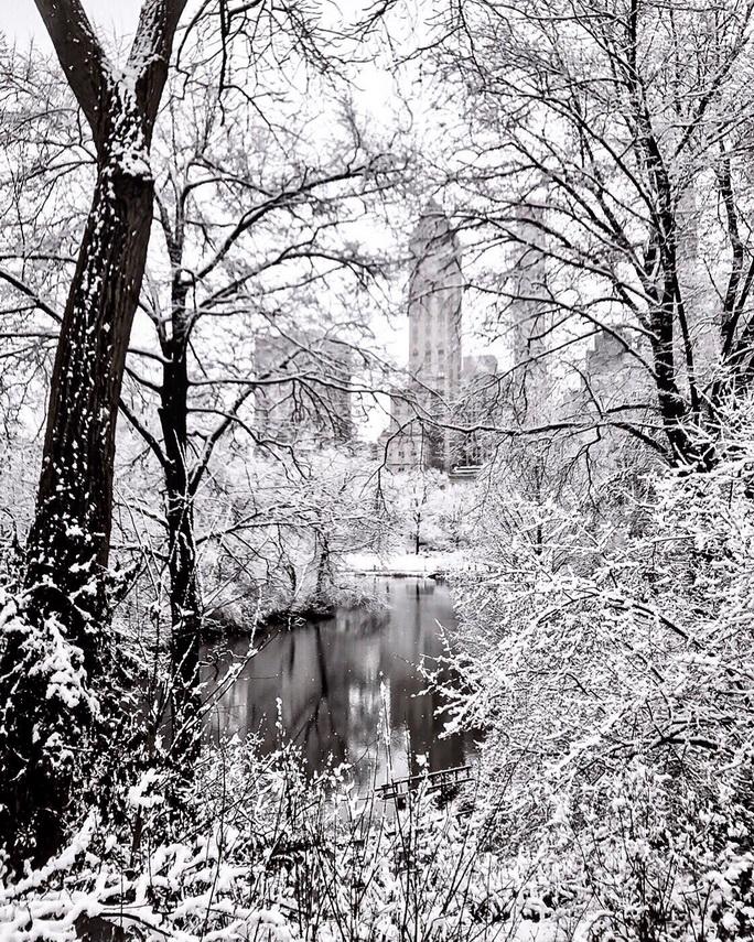 Snow storm, NYC, December2020