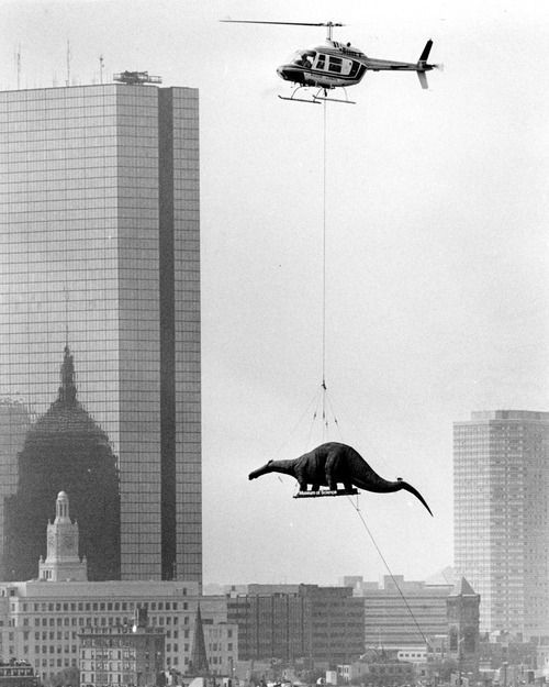 Flying a dinosaur model into the Museum of Science, Boston,1984