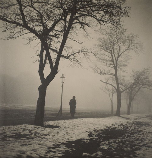 Misty, snowy solitude – photo by Jan Lauschmann,1930