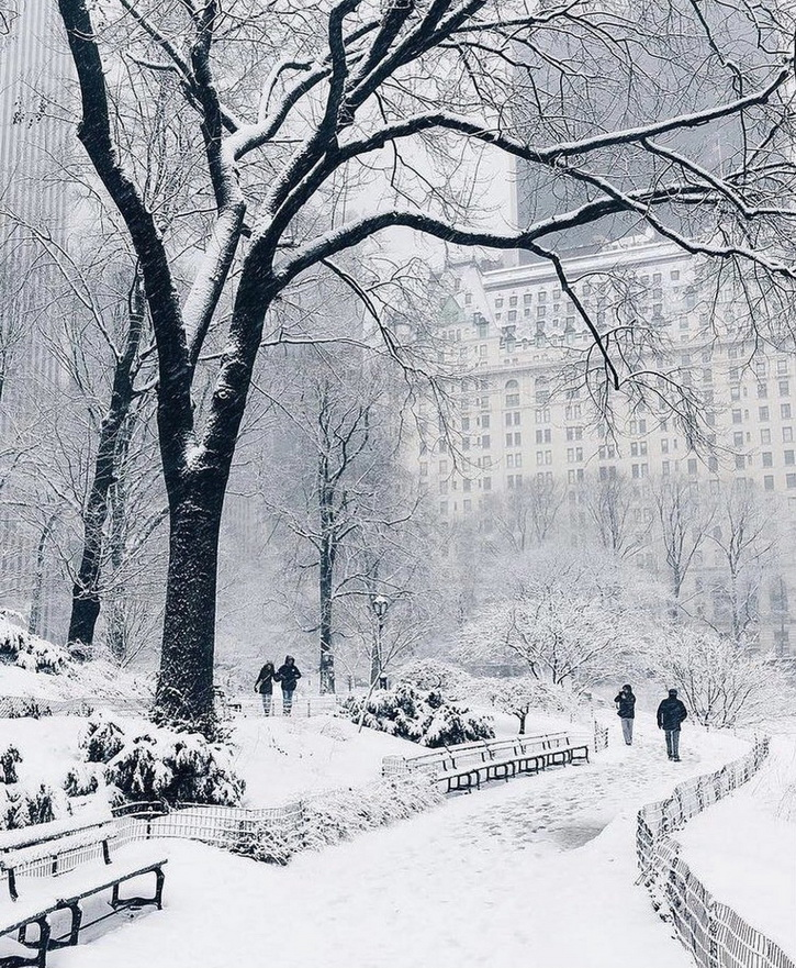 Central Park in a snow storm, NYC, December 2020