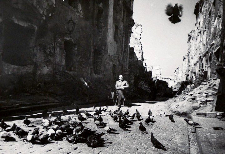 Man feeding pigeons in the ruins of Warsaw at the end ofWWII