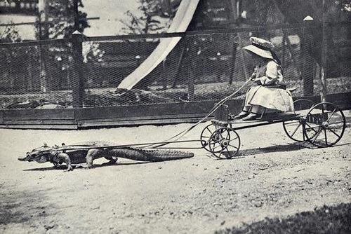 Florida, circa 1905