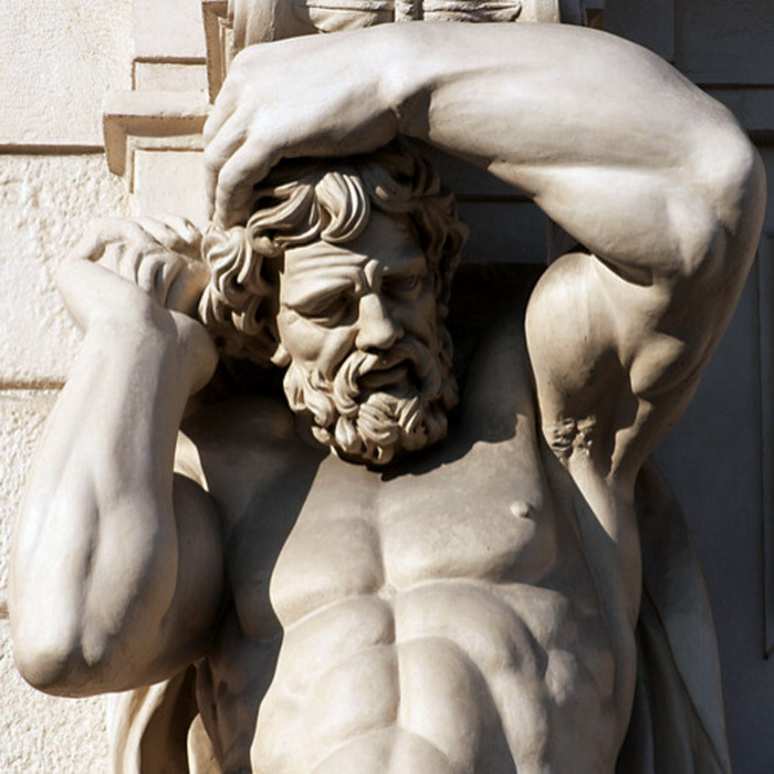 Muscular portico support