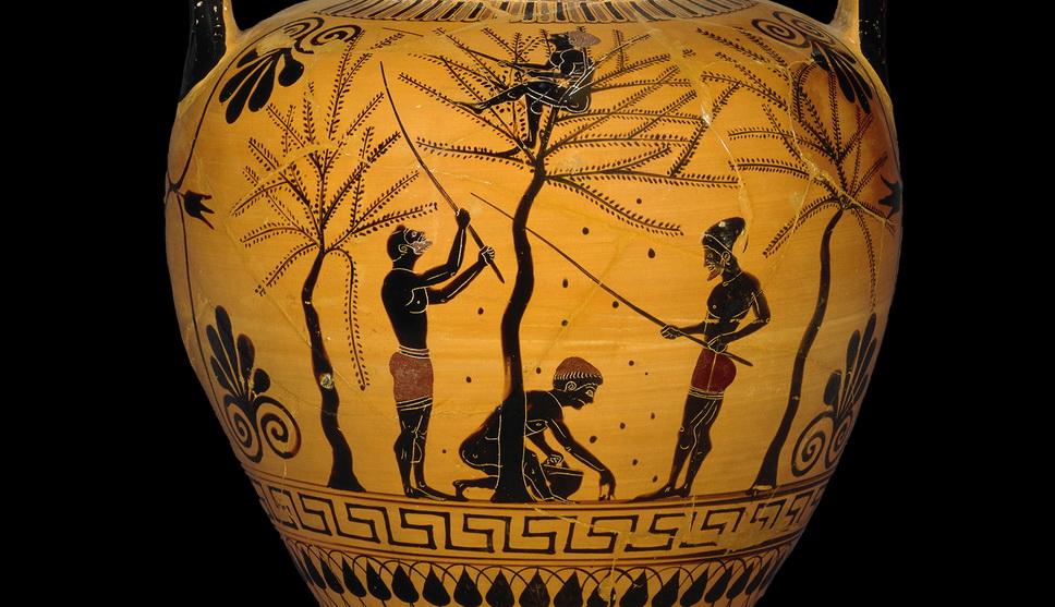 Ancient Greek olive harvest scene onpottery