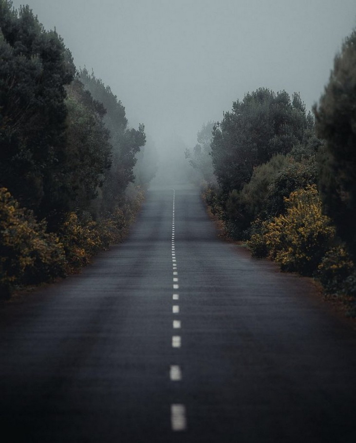 Foggy road inPortugal