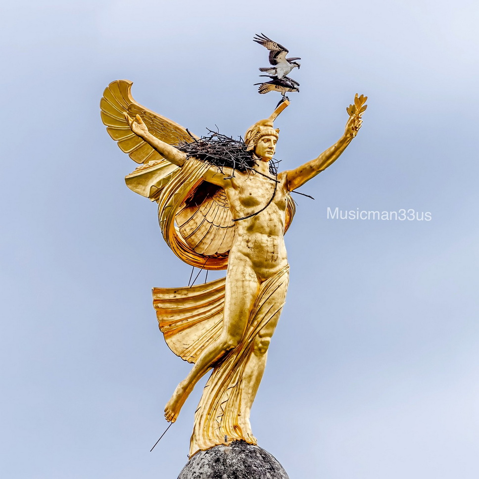 An osprey landing on top of another osprey on top of a statue on top of aroof