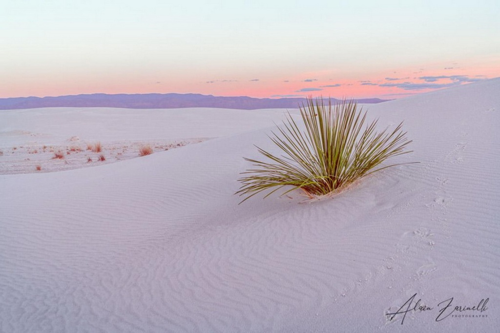 White Sands National Monument, NewMexico