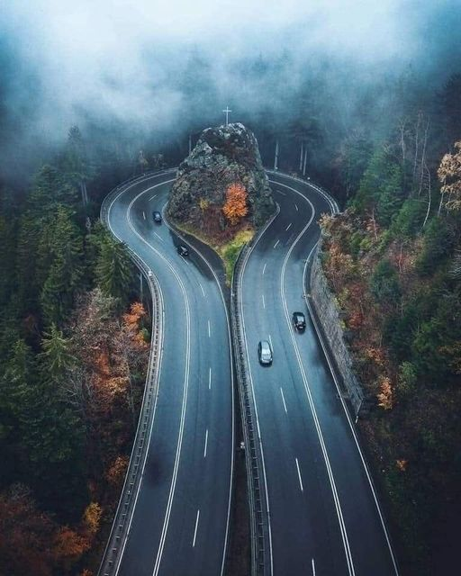 Road in the Black Forest,Germany