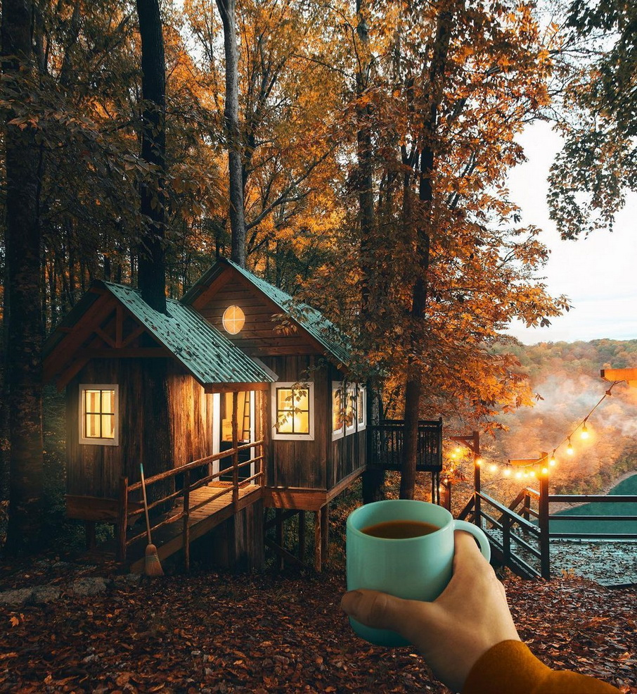 A cabin in theforest
