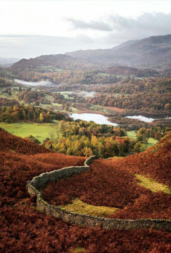 Loughrigg Fell, England in Autumn by John EdwardJames